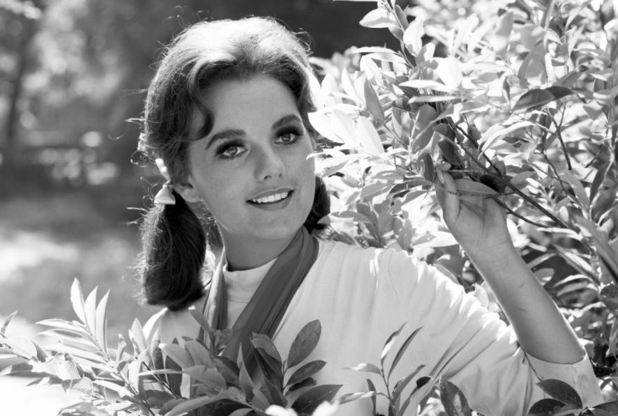 Gilligan's Island Star, Dawn Wells Died At 82