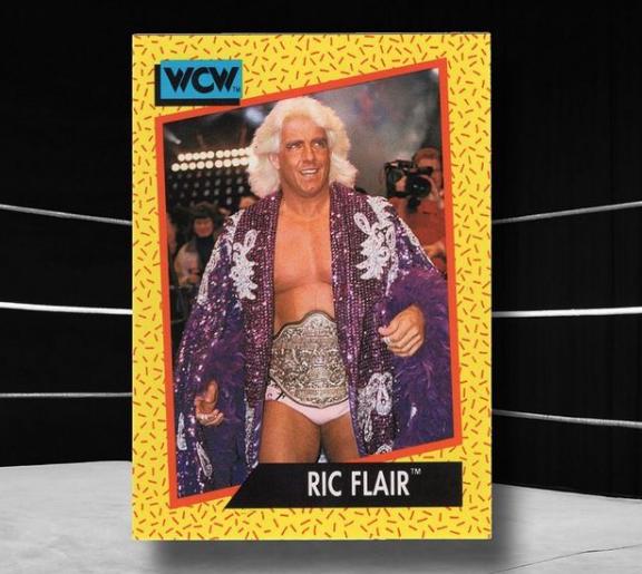 WWE Ric Flair American Professional Wrestler