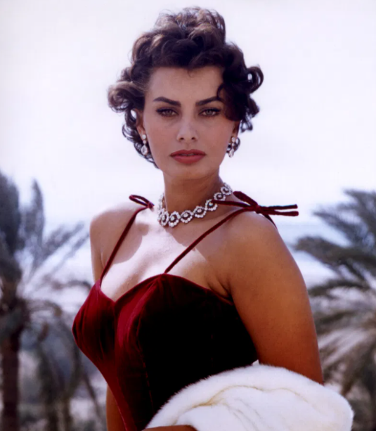 Sophia Loren during her young age