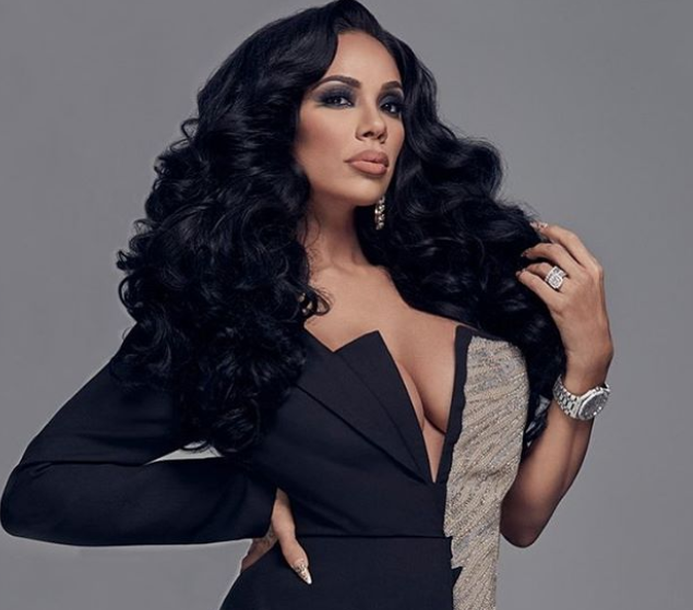 Erica Mena, a famous American television personality, singer, recording artist