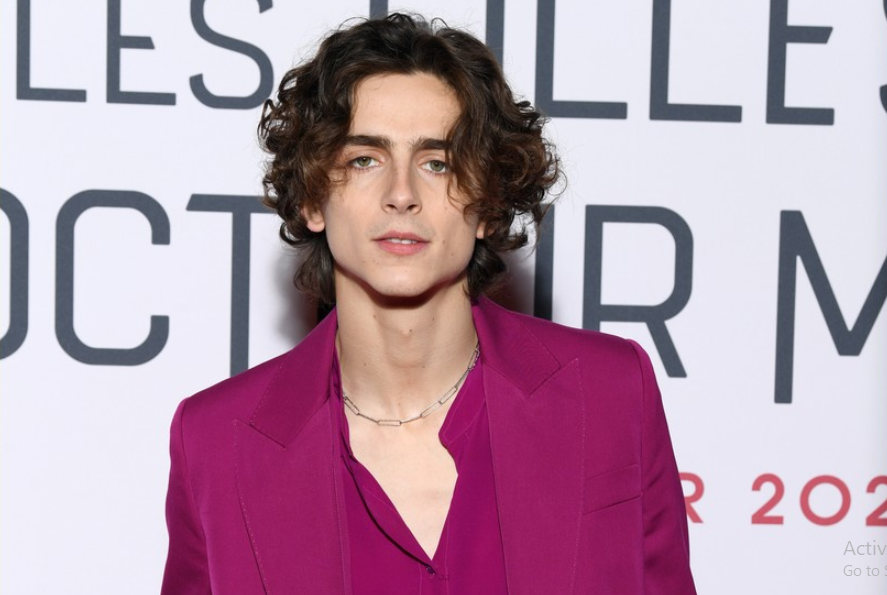 Timothee Chalamet, a professional actor