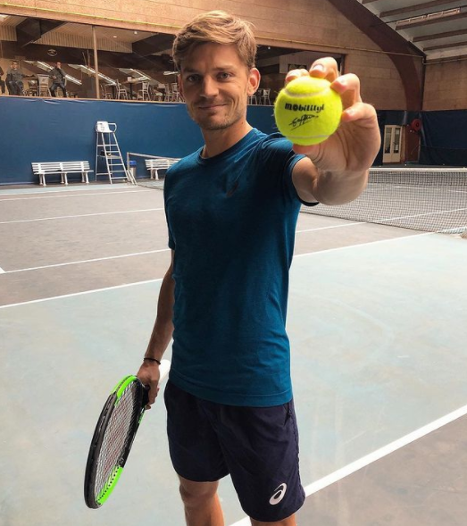 Professional Tennis Player, David Goffin